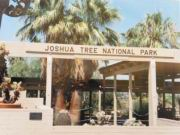 Joshua Tree Eingang