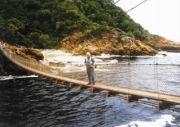 Hängebrücke im Tsitsikamma Park