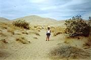 ...Wüste des Mojave National Park